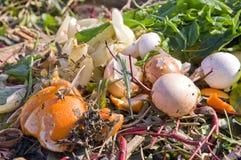 Domestic compost. Orange peel and egg shells Royalty Free Stock Photo