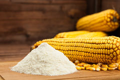 Domestic corn flour arranged with corn cob Royalty Free Stock Image