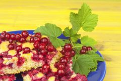 Domestic currant dessert, made from freshly-picked currants. Homemade sweet dessert on the plate. Royalty Free Stock Photos