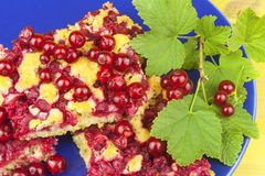 Domestic currant dessert, made from freshly-picked currants. Homemade sweet dessert on the plate. Stock Photos