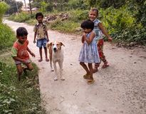 Domestic Dog and kids in rural region