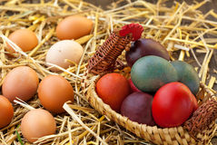 Domestic eggs. Colored and organic eggs in straw nest Stock Photo