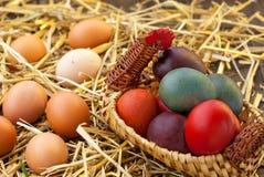 Domestic eggs Stock Photo
