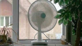 Domestic fan on windowsill in room. Domestic fan on window-sill in room in hot days stock video