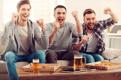Domestic fans. Stock Image