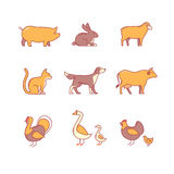 Domestic and farm animals Royalty Free Stock Photo