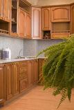Domestic kitchen Stock Images