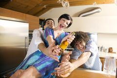 Domestic life Stock Images