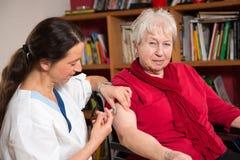 Domestic nursing Stock Photo