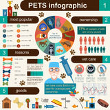 Domestic pets infographic elements, helthcare, vet Stock Photography
