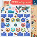 Domestic pets infographic elements, helthcare, vet. Vector illustration Stock Photography