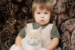 Domestic portrait of girl with white cat Stock Photos