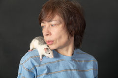 Domestic rat on shoulder Stock Photo