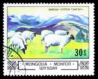 Domestic Sheep Ovis ammon aries in the Highlands, Animals and landscapes serie, circa 1982 stock images