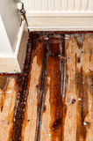 Domestic water leak from a radiator Royalty Free Stock Images