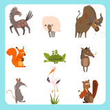 Domestic and Wild Animals Vector Illustration Set Royalty Free Stock Photography