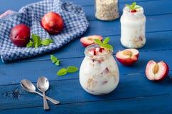 Domestic yogurt with fruit and granola Royalty Free Stock Image
