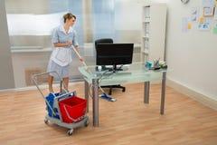Domestica con la zazzera in ufficio immagine stock