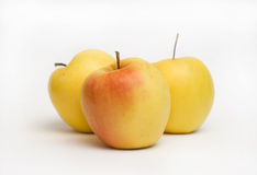 Domestica del Malus de Apple Foto de archivo