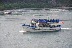 Domestica della foschia, Niagara Falls Fotografia Stock Libera da Diritti