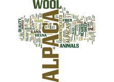 The Domesticated Alpaca Text Background Word Cloud Concept royalty free illustration