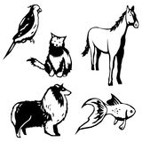 Domesticated animals. Five stylized vector illustrations of domesticated animals stock illustration