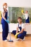 Domestici professionisti immagine stock libera da diritti