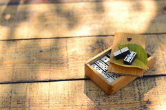Dominós de madeira ajustados Fotografia de Stock Royalty Free