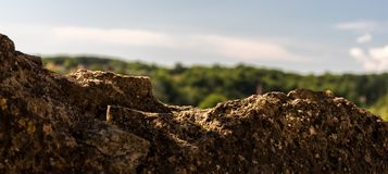 Dominant rock. Landscape of a natural wall in rock with the forest timbered in background Stock Photography