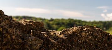 Dominanty skała Fotografia Stock
