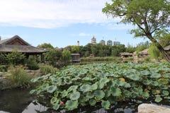 Domingo à tarde parque TianJin China do norte de Beining foto de stock