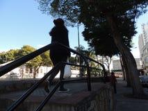 Domingo de manhã, andando no parque Imagem de Stock Royalty Free