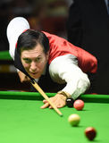 Dominic Dale of Wales Royalty Free Stock Photography