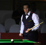 Dominic Dale of Wales Royalty Free Stock Photo