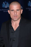 Dominic Purcell Royalty Free Stock Photo