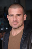 Dominic Purcell Stock Images