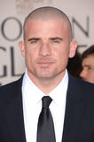 Dominic Purcell Royalty Free Stock Photos
