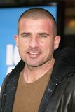 Dominic Purcell Stock Image