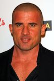 Dominic Purcell Photographie stock libre de droits