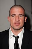 Dominic Purcell Royalty Free Stock Photography