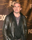 Dominic Purcell Royalty Free Stock Images