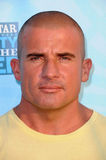 Dominic Purcell Stock Photos