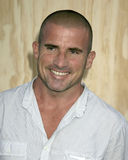 Dominic Purcell Stock Photography