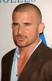 William S Paley, William S. Paley, Dominic Purcell Lizenzfreies Stockfoto