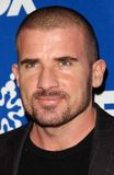Dominic Purcell Royaltyfri Foto