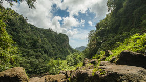 Dominica Stock Images