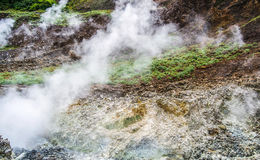 Dominica Boiling Lake Hike Landscape. Dominica Boiling Lake and Valley of Desolation Hike in the Caribbean Stock Photography