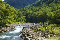 Dominica, Caribbean royalty free stock image