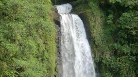 Dominica (Caribbean) - Trafalgar Falls - Morne Trois Pitons NP Stock Photos