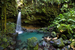 Dominica-Erforschungen Lizenzfreie Stockfotografie